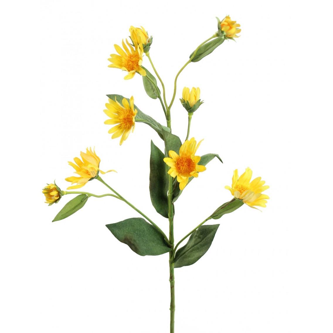 Aster artificiel jaune