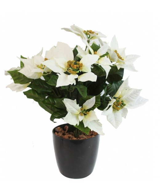 Poinsettia artificiel blanc 40 cm