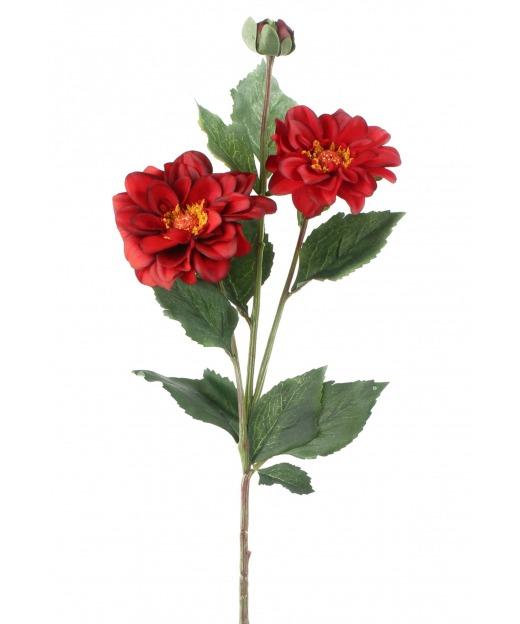 Duo de dahlias rouges