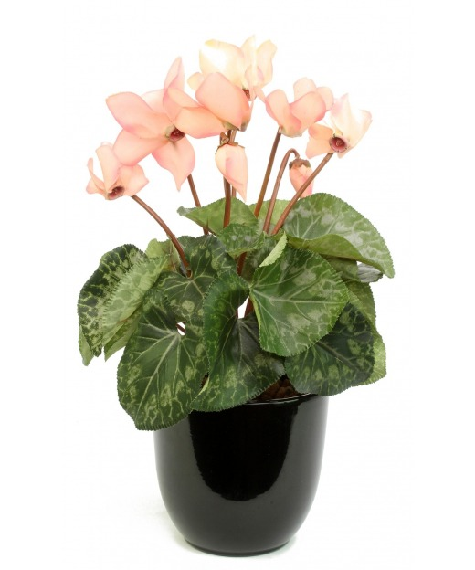 Cyclamen artificiel rose 32 cm