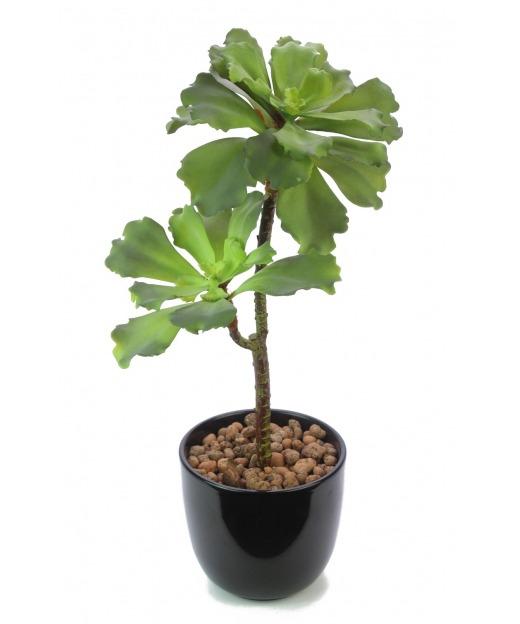Succulente artificielle verte 50 cm