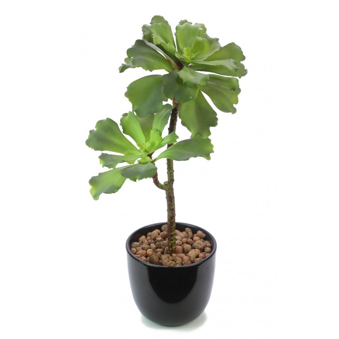 Succulente artificielle verte