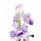 Vanda artificielle parme