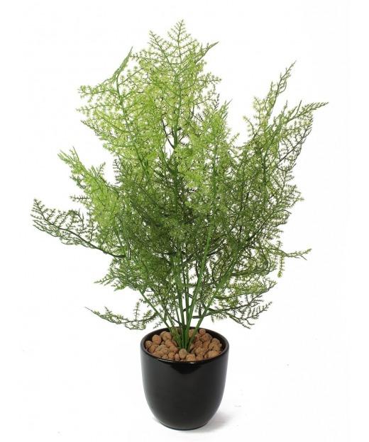 Asparagus artificiel 50 cm