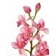 Cymbidium artificiel rose