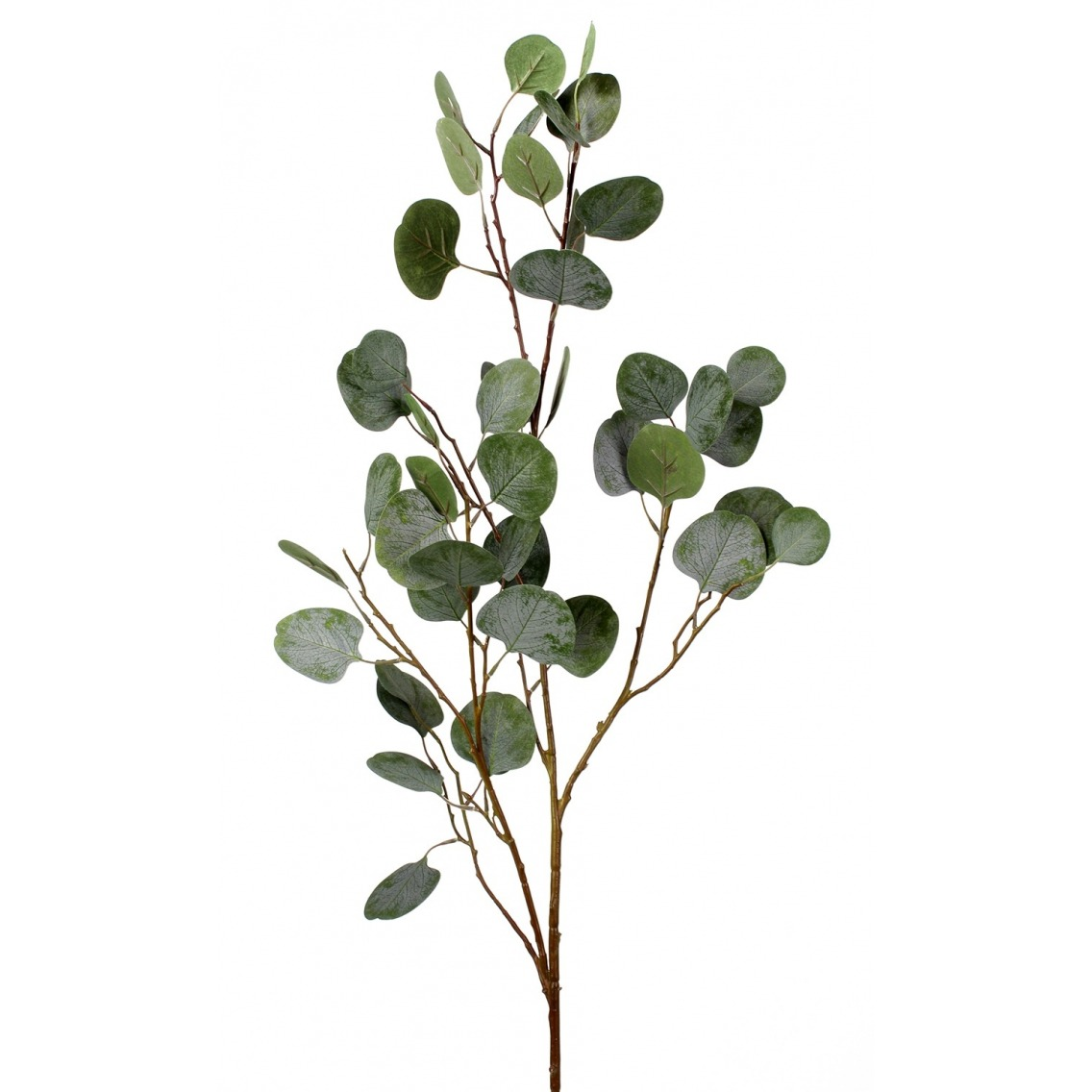 Feuille d'eucalyptus artificielle