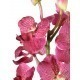 Dracaena fragrans artificiel
