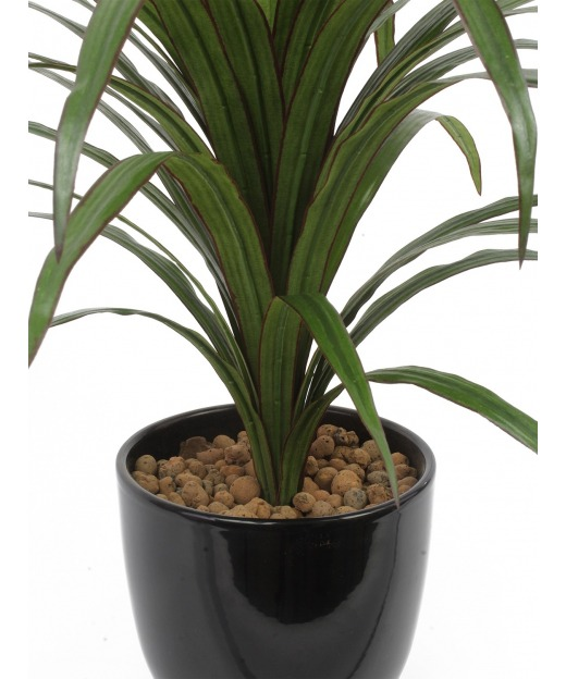 Dracaena artificiel warneckii 50 cm