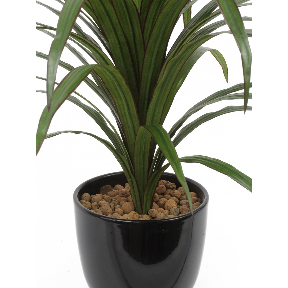 Dracaena artificiel warneckii