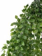 Feuillage de la chute d'eucalyptus artificielle