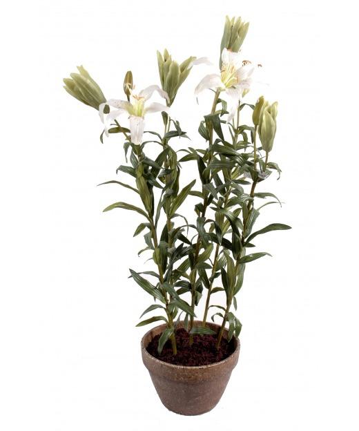 Lilium artificiel