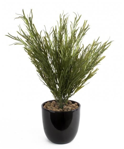 Podocarpus artificiel buisson