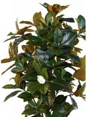 Magnolia artificiel fleuri