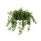 Citrus artificiel