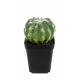 Kalanchoe artificiel rose clair