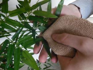 Nettoyer efficacement sa plante artificielle