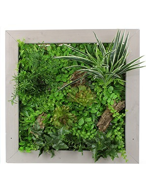 Fabriquer son propre cadre végétal avec une plaque artificielle ...